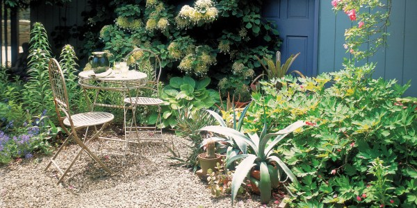 cheap landscaping ideas - budget-friendly