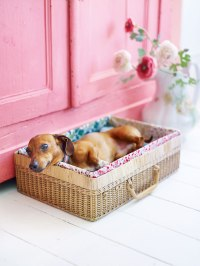 14 Adorable DIY Dog Bed - Cheap Pet Beds