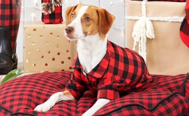 28 Best Gifts For Dog Lovers 2017 Unique Dog Owner