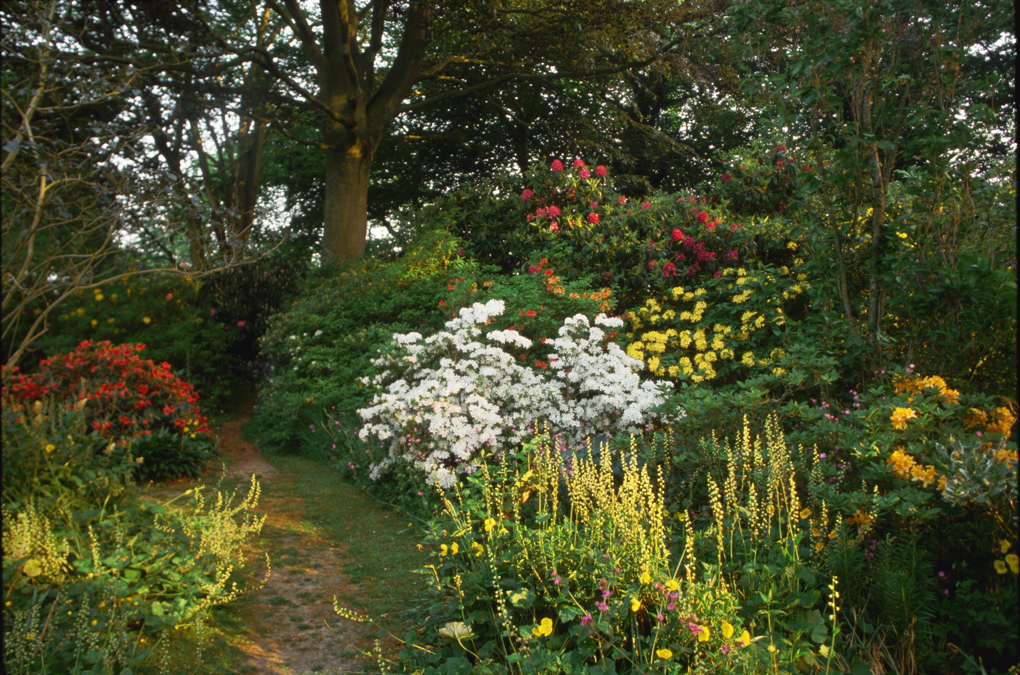 English Cottage Garden in WI