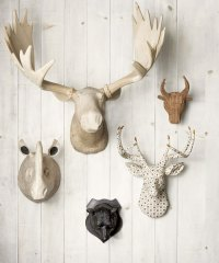Trophy Heads - Cute Faux Taxidermy Heads