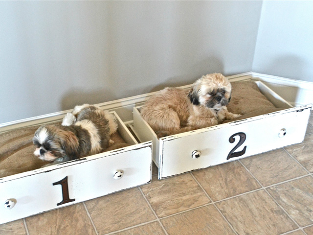 You've heard of babies sleeping in drawers in the days of yore, so why not convert some old dresser drawers into a spot for your little furry kids? Paint and distress the wood for a shabby chic look, and affix some house numbers on the front to designate which pup sleeps where. Burlap-covered pillows in each make them perfect for napping. Get the tutorial at Liz Marie. RELATED: The Top 10 Dogs of Instagram