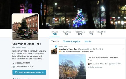 The tree garnered so much interest that account was made for it