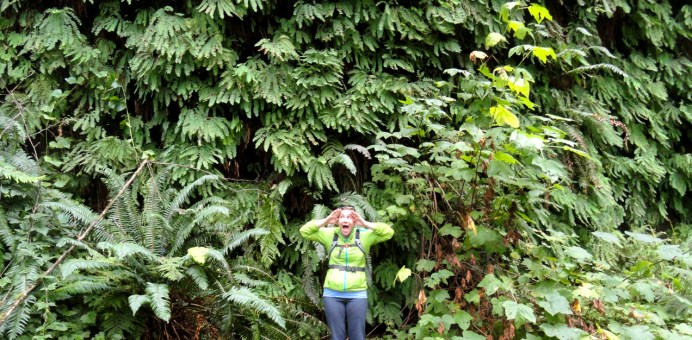 """I preferred to call Fern Canyon """"Ferngully"""" like the movie. """"I can see! I can see! it's a miracle! I can SEEEE!"""""""