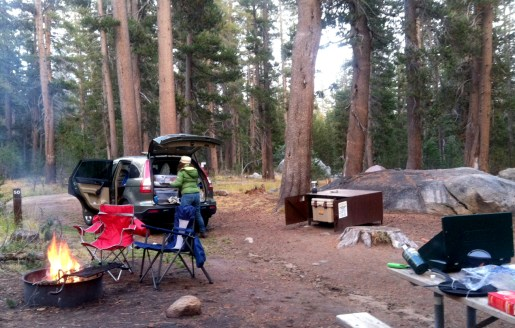 this was our FREEZING cold campsite at Porcupine Flat in Yosemite. We slept in the car, for fear of freezing to death in the tent (we have really cheap sleeping bags) and still froze. There was a thick layer of ice INSIDE the car windows when we woke up. Chilly night!
