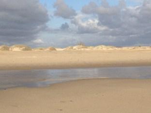 Beach Breezes