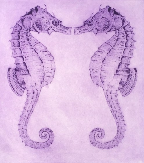 Orchid Seahorse twins