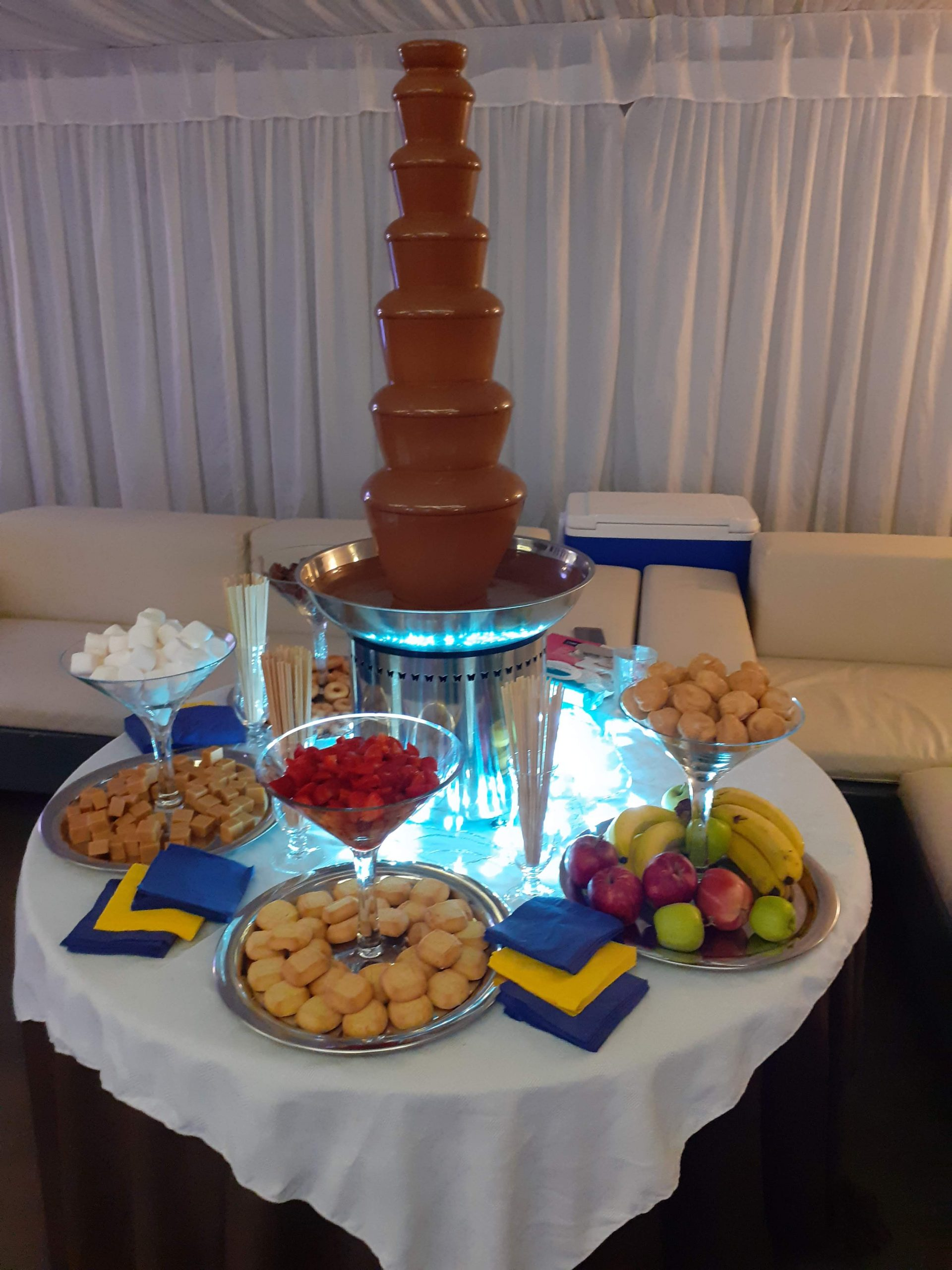 Chocolate Fountain with Fresh dips
