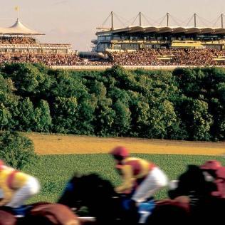 Best English Venue, Grandstands, Horse Racing, The Goodwood Estate, Prestigious Venues