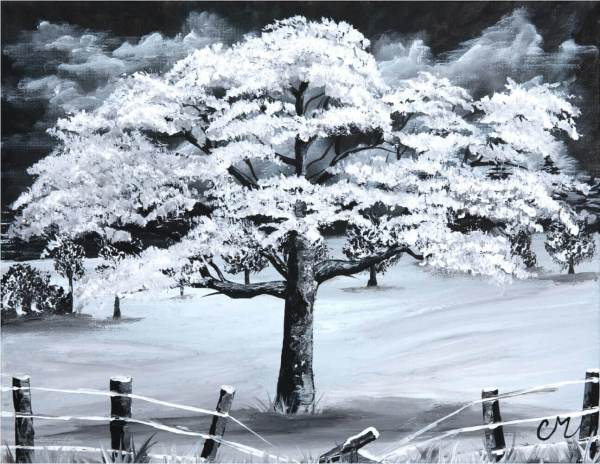 black and white acrylic painting of a winter tree and broken fence