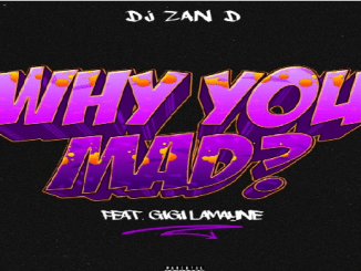 DJ Zan D – Why You Mad