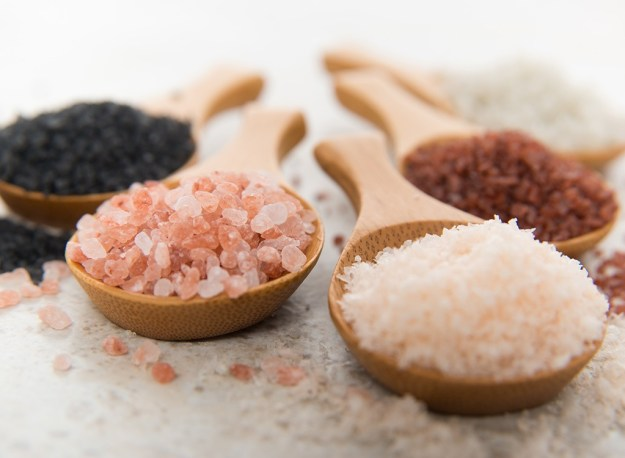 salt-types
