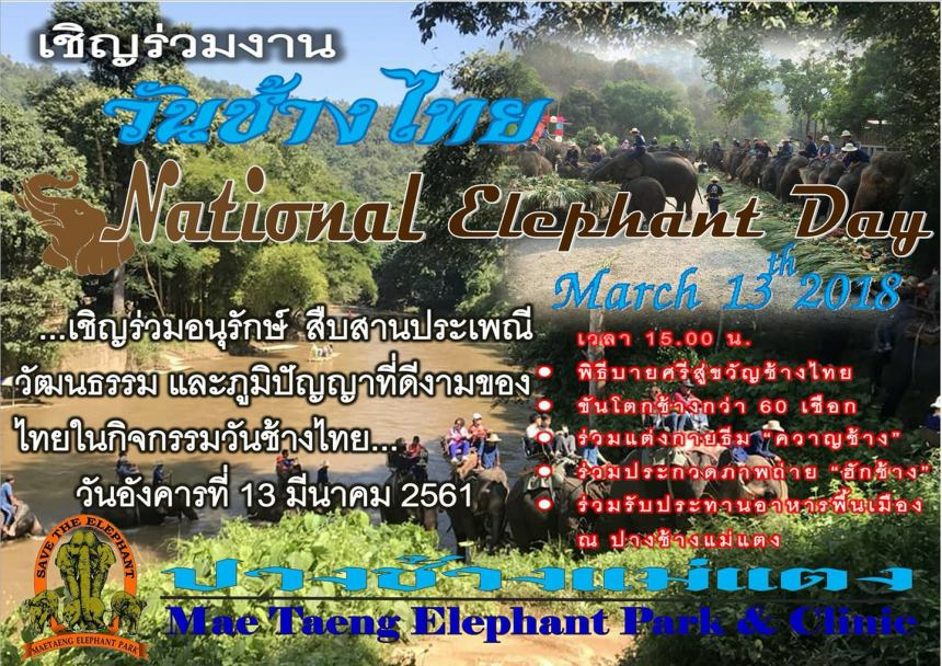ThaiElephantDay2018MaeTaengCover