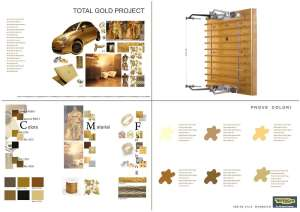 Mood board & Color Material - Kinesis Personal Gold Version