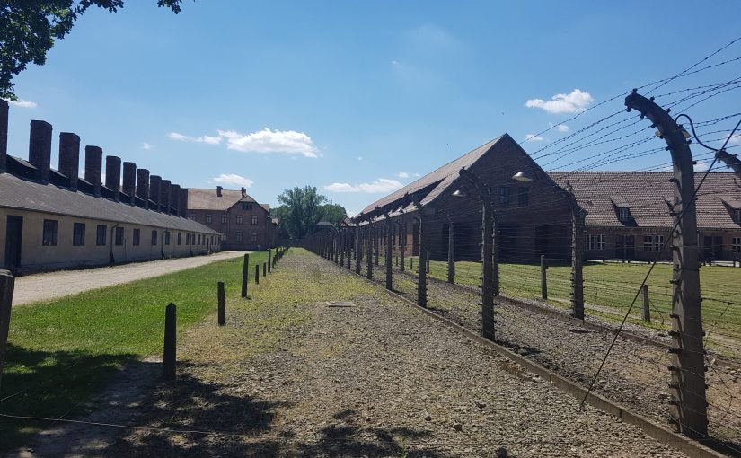 Midsummer in Auschwitz