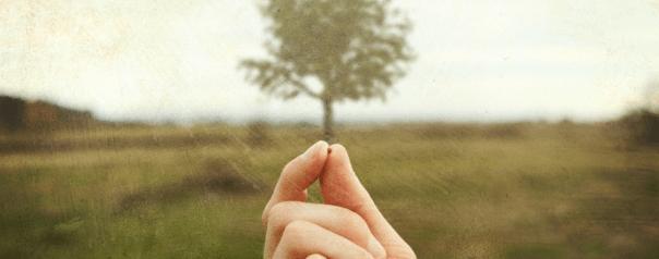 mustard seed faith