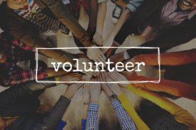 Volunteer small