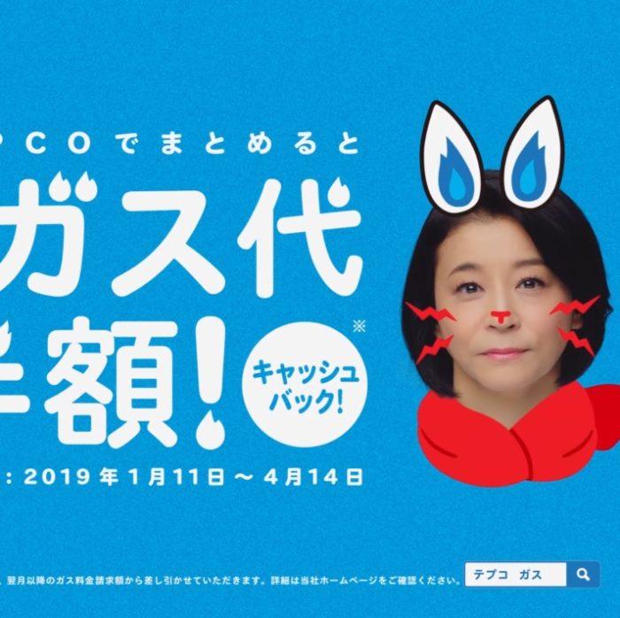高嶋ちさ子 テプコ CM