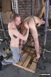 gay breeder