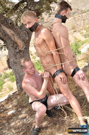 tied twinks