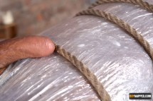 bound cock