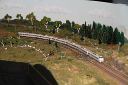 Cows on the layout