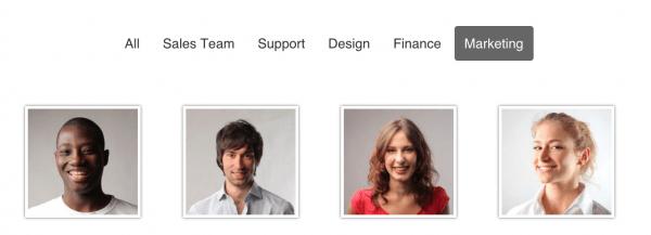 Team Showcase - WordPress Plugin 5