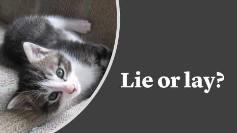 Lie or lay?