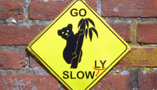 GO SLOW(LY)