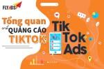 4 loại hình Quảng cáo Tiktok tại Việt Nam 2020
