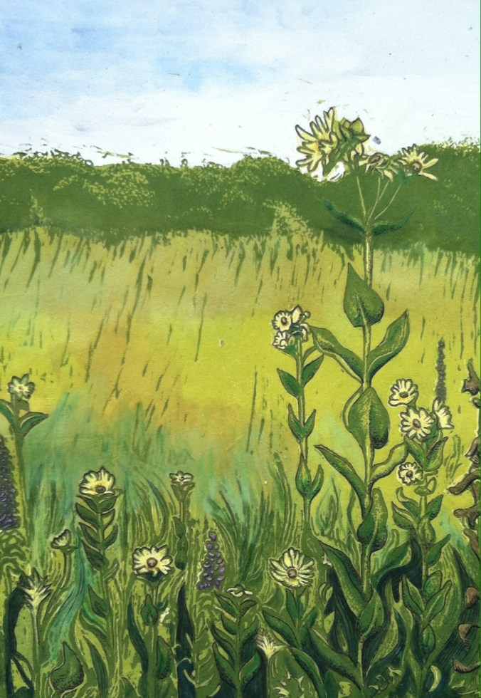 """""""Pawnee Prairie Park"""" - Color Relief Print and Mixed Media - $100"""