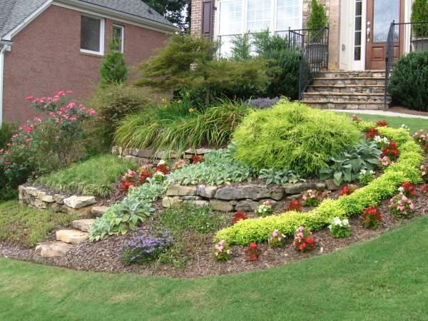 make yard beautiful