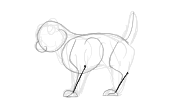 How to Create a Walking Kitten Animation In Adobe Photoshop