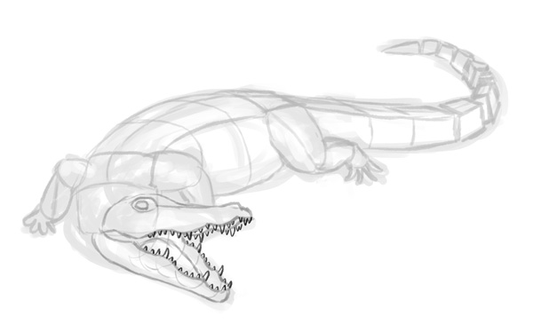 How to Draw Animals: Crocodiles, Alligators, Caimans and