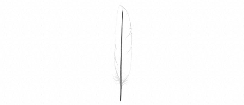 como desenhar cortes de penas