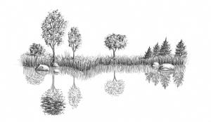 draw water reflection lake drawing waves nature reflected step bodies save sky