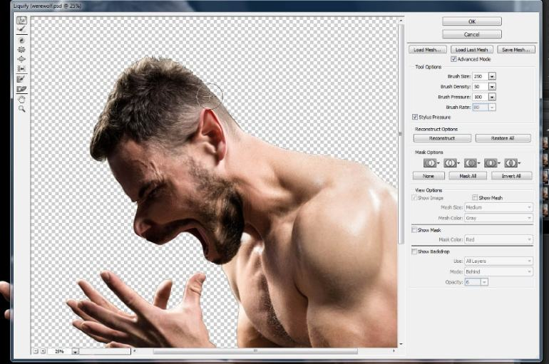 how to use the liquify tool
