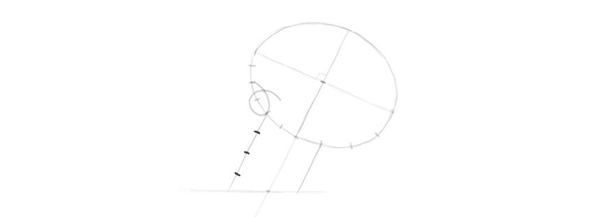 desenho proporções mandíbulas