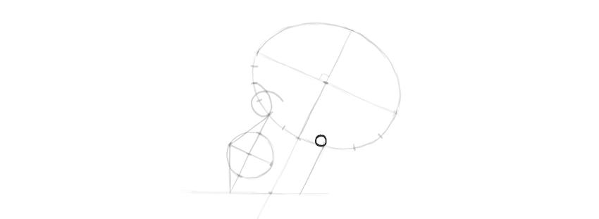 Como aprender a desenhar um crânio de perfil