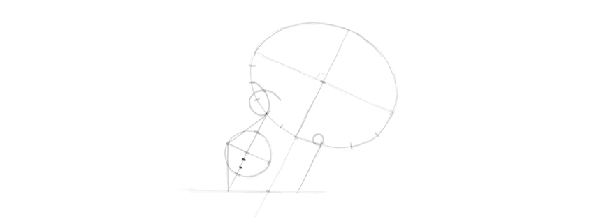 Como desenhar um crânio humano de perfil
