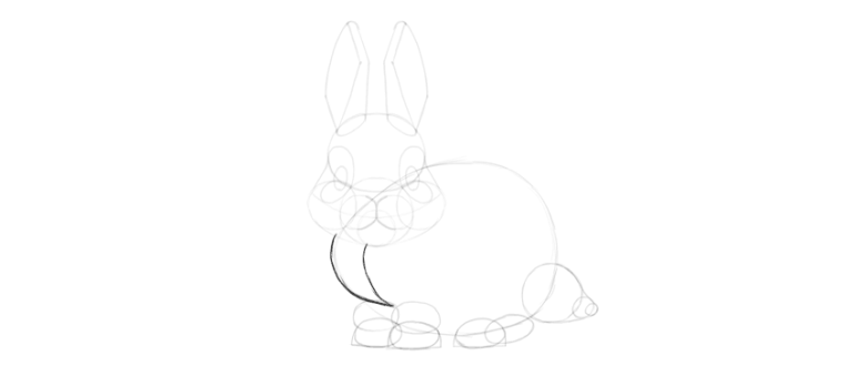 bunny mane