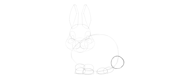 bunny tail drawing