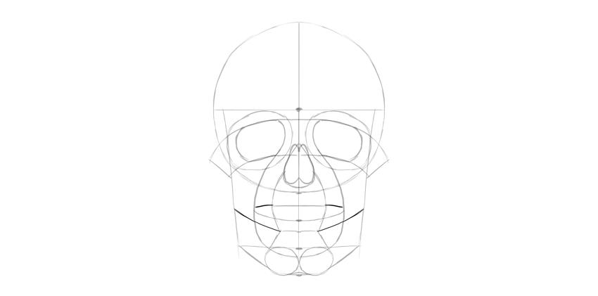 linha de mandíbulas do crânio humano