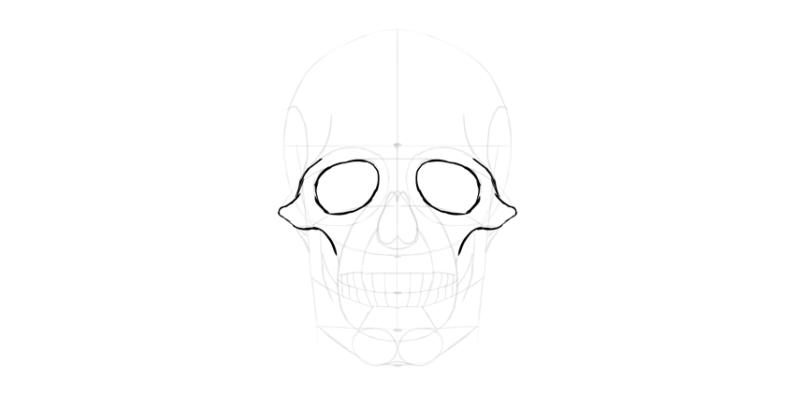 human skull eye socket outline