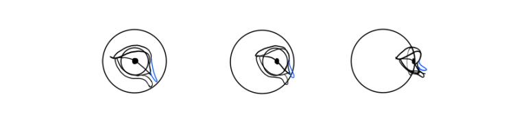 lion eye corner how to draw