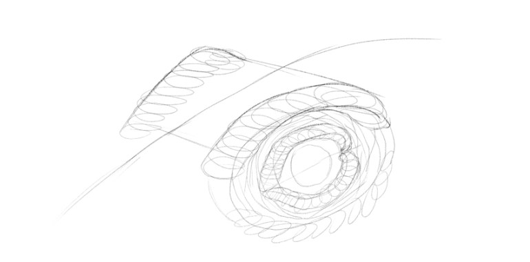 lizard detailed eye drawing