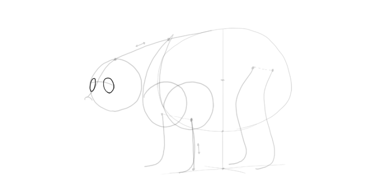 bear drawing eye sockets