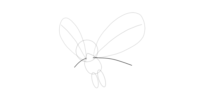 draw middle wings butterfree