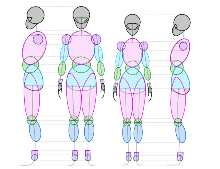 anime body forms