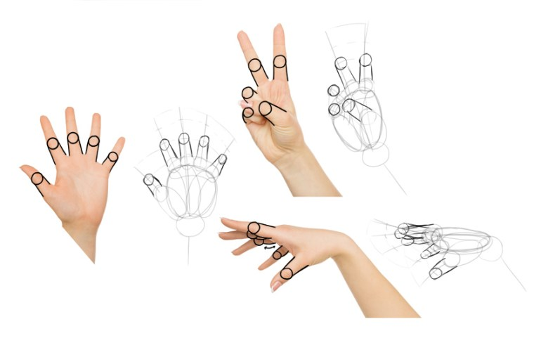 draw finger joints